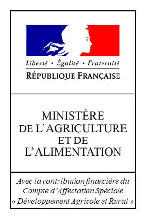 LogoCASDAR